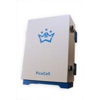 Бустер Picocell 900/1800 BST